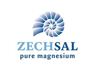 zechsal-logo
